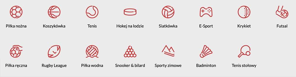 Dyscypliny sportowe PZBuk