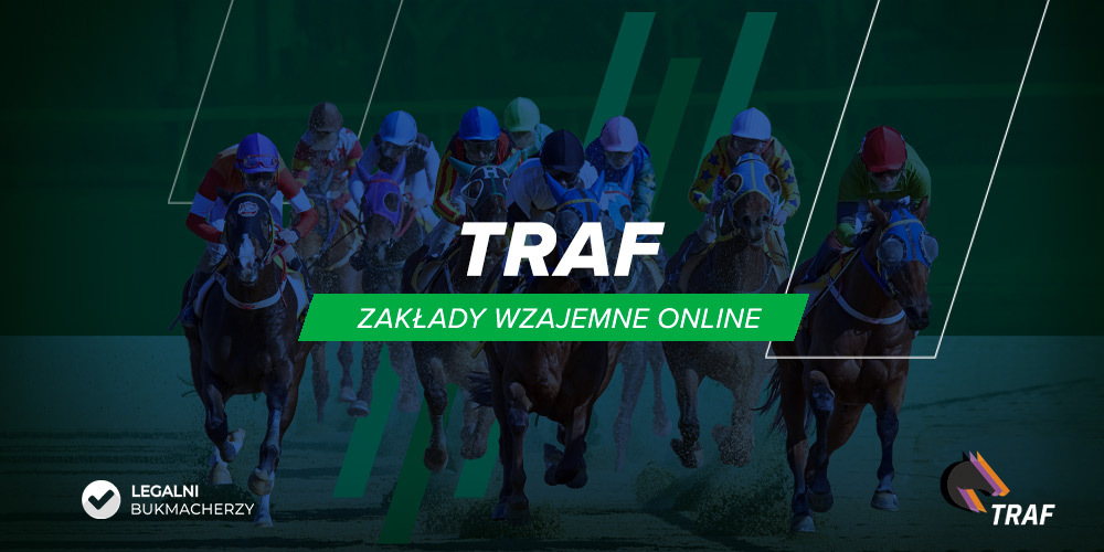 Traf Online opinie
